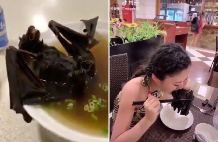 "New Video Blames Chinese ""Bat Soup"" For Coronavirus outbreak"