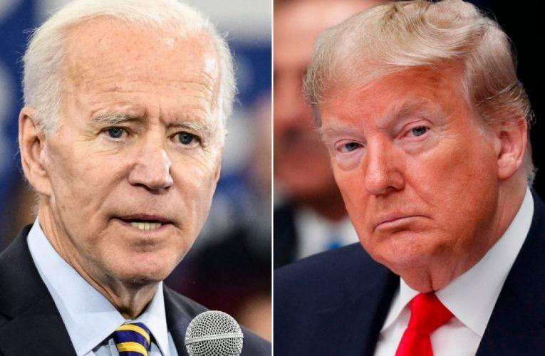 Americas 2020 Election: Democrats Vs Rule of Law